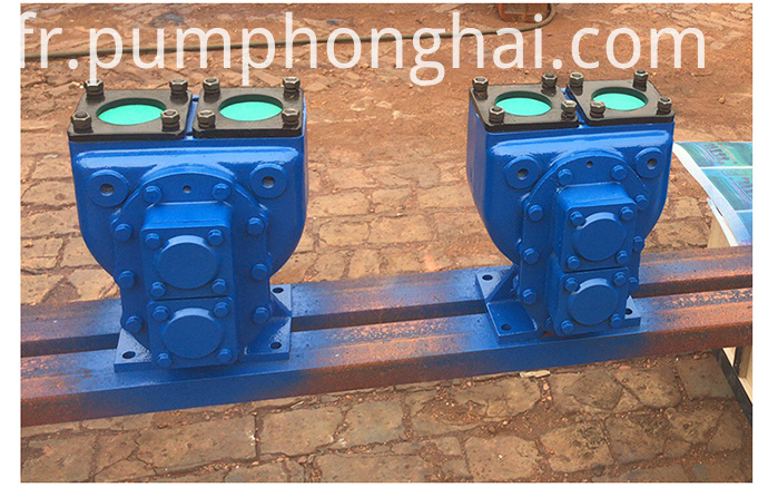 arc gear pump