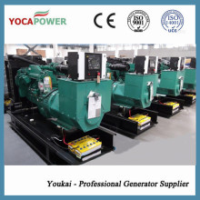 100kw / 125kVA Cummins Power Generador Diesel