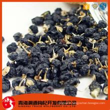 dried wild black barbary wolfberry