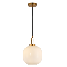 Decorative  Indoor Pendant Lamp