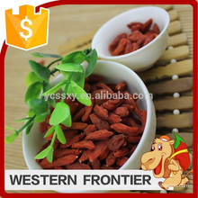 Purely natural health and delicious primary ecology goji berry