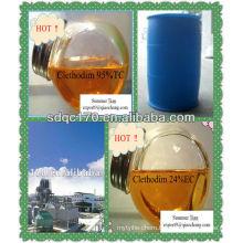 herbicide clethodim 95%TC 24%EC 12%EC