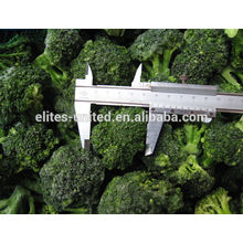 Broccoli congelé