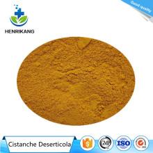 Buy online ingredients Cistanche Deserticola Extract Powder