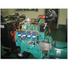 20kVA-2000kVA Erdgas-Generator Motor Generator-Set