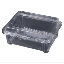 Ready to ship fruit tray  Food packaging eggs packaging custom size  plastic tray