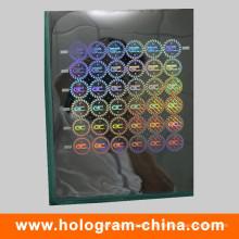 Sicherheits-Anti-Fälschungs-3D Laser-holographischer Meister