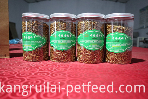 Ostrich Food Dried Yellow Mealworm