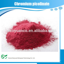 Bester Hersteller Top Verkauf Chrom Picolinat Pulver
