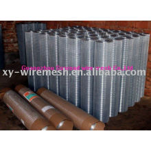 New Arrived Welded Wire Mesh(factory)