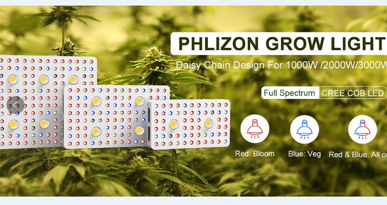 Phlizon Cob Led Light