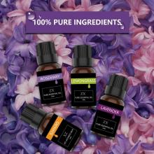 100% Pure Essential Oil Gift Set 6/10ml Aromatherapy