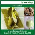 Natural Extracto de algas marinas en polvo de fucoxantina (fucoxantina)