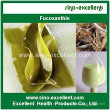 Natural Fucoxanthin Powder Kelp Extract (Fucoxanthin)