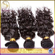 продукты бесплатный образец вьющиеся волосы девственницы 100% малайзийские волосы,горячий продавать 2014