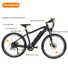 2018 New Made in China E Motor Cycle Mountain Bike Electric Offroad Bike