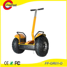 2 Wheel Lithium Battery Self Balancing Electric Sightseeing Bicycle