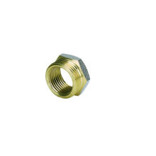 Латунные фитинги Втулка для трубы PEX-Аль-PEX с коннетор