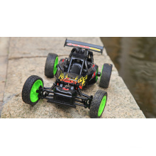 1/16 RC Formula 1 Toy Cars The Price of Electric RC Car