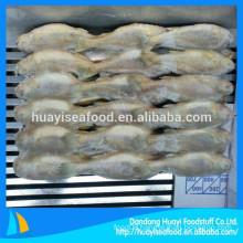 Small Size Yellow Croaker On Sale China Yellow Croake