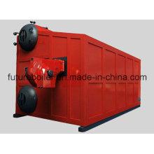 Caldeira de vapor de 25 toneladas / H