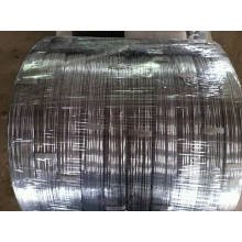Galvanized Wire Oval 2.2X2.7mm, 2.4X3.0mm for Farm Fencing
