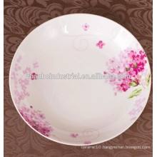Fine new bone china porcelain plates and dishes for restaurant and & hotel with all size
