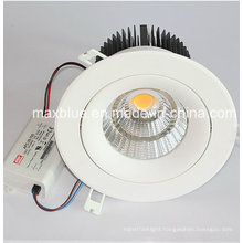 30W CREE COB LED Ceiling Downlight with Meanwell Driver