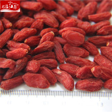 Top quality wholesale chinese wolf berries