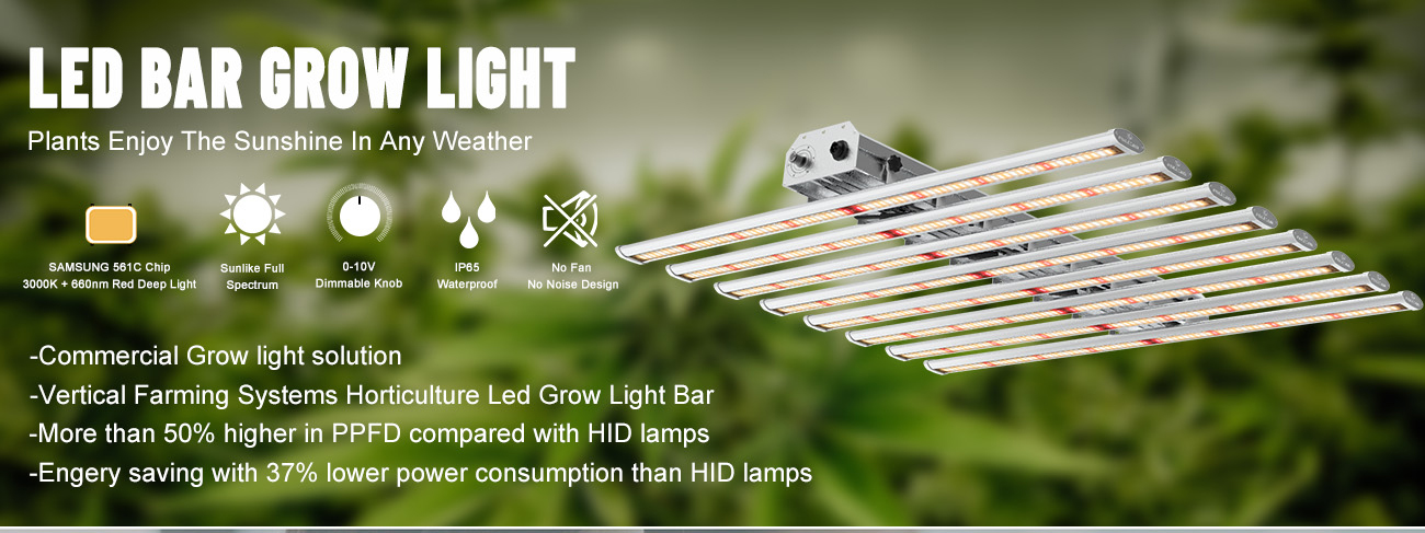 Samsung Grow Lights