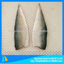 Iqf maquereau de filet de poisson congelé