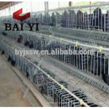 Afrique du Sud Distributeur Volaille Farming Cage de poulet