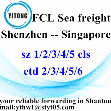 Shenzhen à Singapour International Freight Forwarder