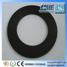 Large Ring Magnet Neodymium Magnets in Speakers