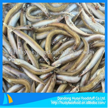 frozen fresh wholesale perfect cheap sand lance best price