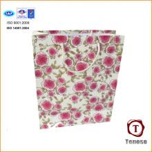 2016 New Design Gift Offset Paper Bag for Shopping