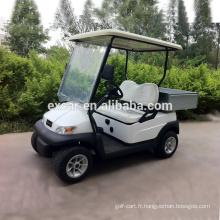 2 places électrique chariot de golf prix électrique pas cher golf panier à vendre chine mini buggy