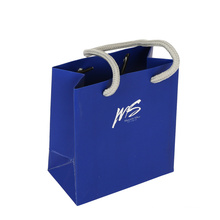 Promotional Custom Fashion Shopping Paper Packaging Gift Bag with Handle