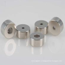 Неправильный постоянный неодимовый магнит диктора NdFeB с RoHS
