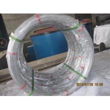 Oval Iron Wire mit hoher Qualität, Export nach Südamerika