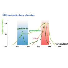 300W LED-Hochleistungsanlage wachsen hell