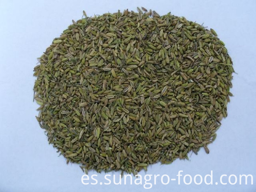 Top Quality Fennel Powder
