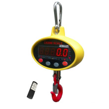 Échelle électronique numérique à 100kg de suspension numérique