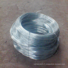 Vente chaude fil de fer galvanisé / fil de laçage