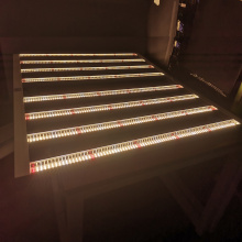 Gavita Led Grow Light Spectre complet 660w 3.0umol / j