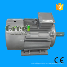 Low 50kw Electric Generator Rotating Magnet Permanant