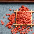Chinesische organische goji Beere getrocknet