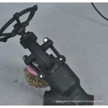 Forged Steel Worm Gear Lever Bellows Globe Valve