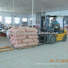 Knoblauch neue Ernte aus China