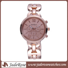 Fashion Wrist Watch Chesp Gift Watch Women′s Alloy Watch